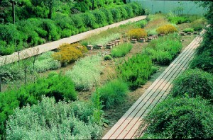 gardengillesclement