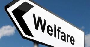 welfarepuglia