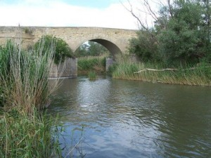 fiume-ofanto-1